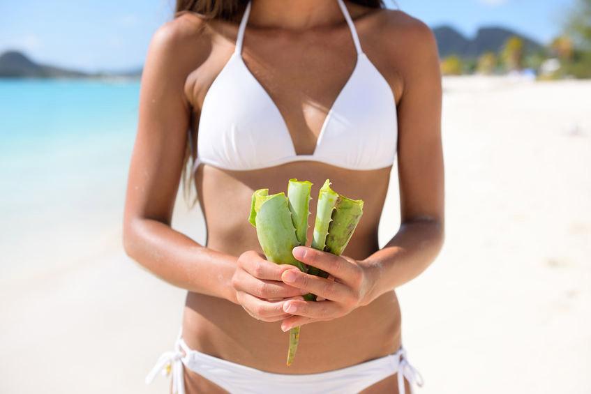 Zastosowanie aloesu w opalaniu i poparzeniach słonecznych