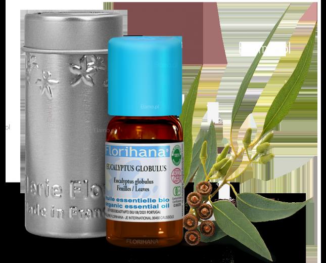 olejek eukaliptusowy eteryczny florihana powstały z destylacji lisci i pędów eukaliptusa