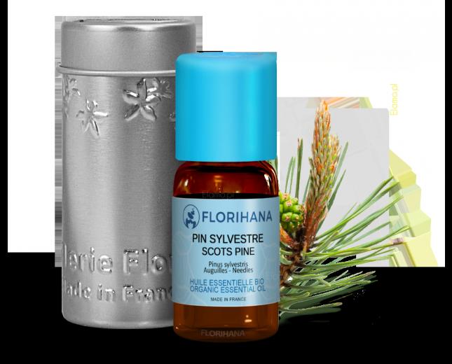 olejek sosnowy florihana z pędem sosnowym