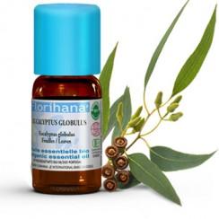 olejek eukaliptusowy florihana