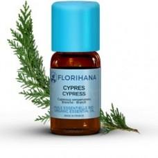 Olejek Cyprysowy z igieł (Cupressus sempervirens)  - FLORIHANA