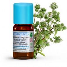 Olejek Majerankowy z kwiatostanów Origanum Majorana - FLORIHANA